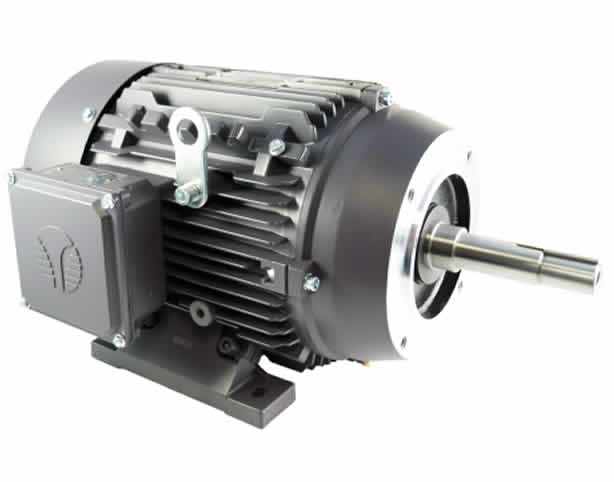 Close Coupled Pump Motor