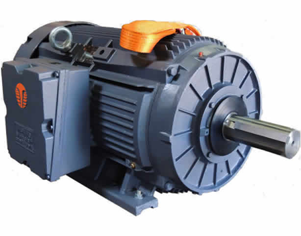 Crusher Duty NEMA 3 Phase Electric Motor