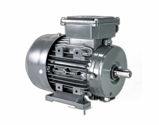 IEC Metric Electric Motor