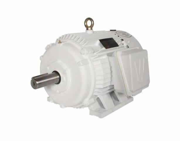 Oil Pumper NEMA 3 Phase Electric Motor
